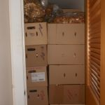 A closet in Jeremy's home filled with mushrooms. Jeremy says sometimes he spends weeks in the woods hunting mushrooms.